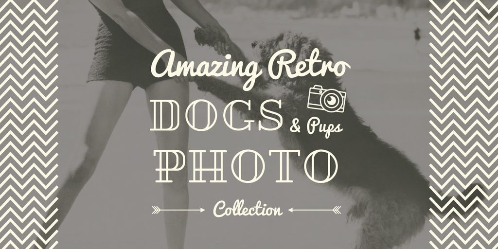 amazing retro dogs photo collection poster — ein Design erstellen
