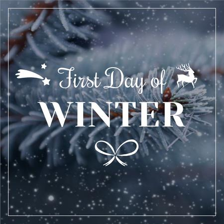 First Day of Winter with frozen fir tree branch Instagram – шаблон для дизайну