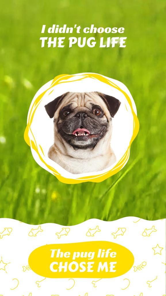Funny Smiling Pug on Grass Background | Vertical Video Template — Create a Design