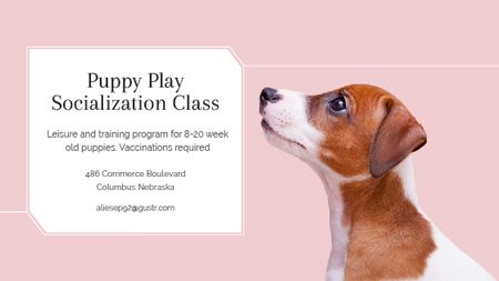 Puppy socialization class with Dog in pink Title Tasarım Şablonu