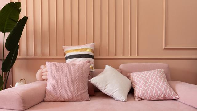 Modèle de visuel Pillows on Sofa in pink room - Zoom Background