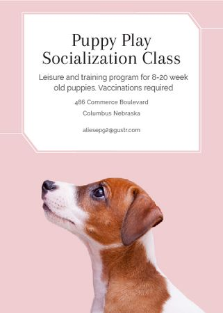 Plantilla de diseño de Puppy socialization class with Dog in pink Flayer