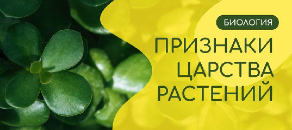Biology Courses Green Succulent Plant — ein Design erstellen