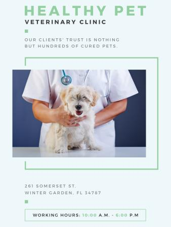 Vet Clinic Ad Doctor Holding Dog Poster US Modelo de Design