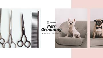 Pets Grooming Guide Cute Dogs