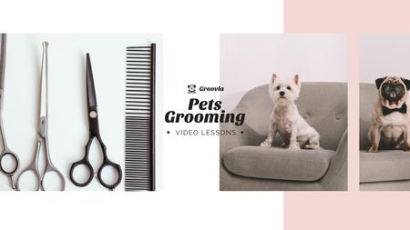 Template di design Pets Grooming Guide with Cute Dogs Youtube