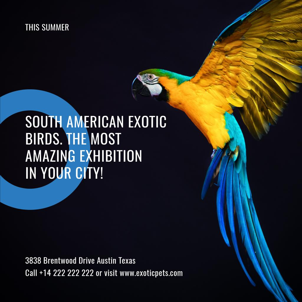 Exotic birds Exhibition Announcement with Bright Parrot — ein Design erstellen