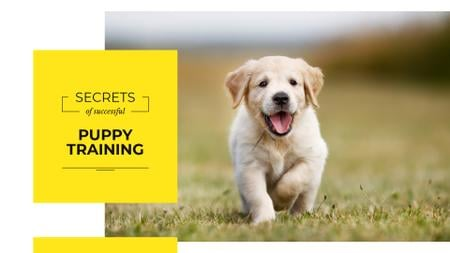 Secrets of successful puppy training Presentation Wide Modelo de Design
