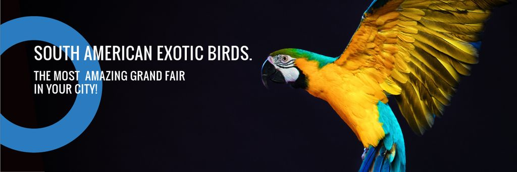 South American exotic birds shop — Створити дизайн