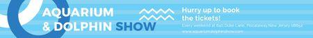 Aquarium & Dolphin show Leaderboard Design Template