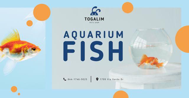 Pet Shop Ad Fish Swimming in Aquarium Facebook ADデザインテンプレート