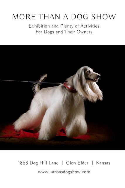 Dog Show Announcement Pinterest – шаблон для дизайну