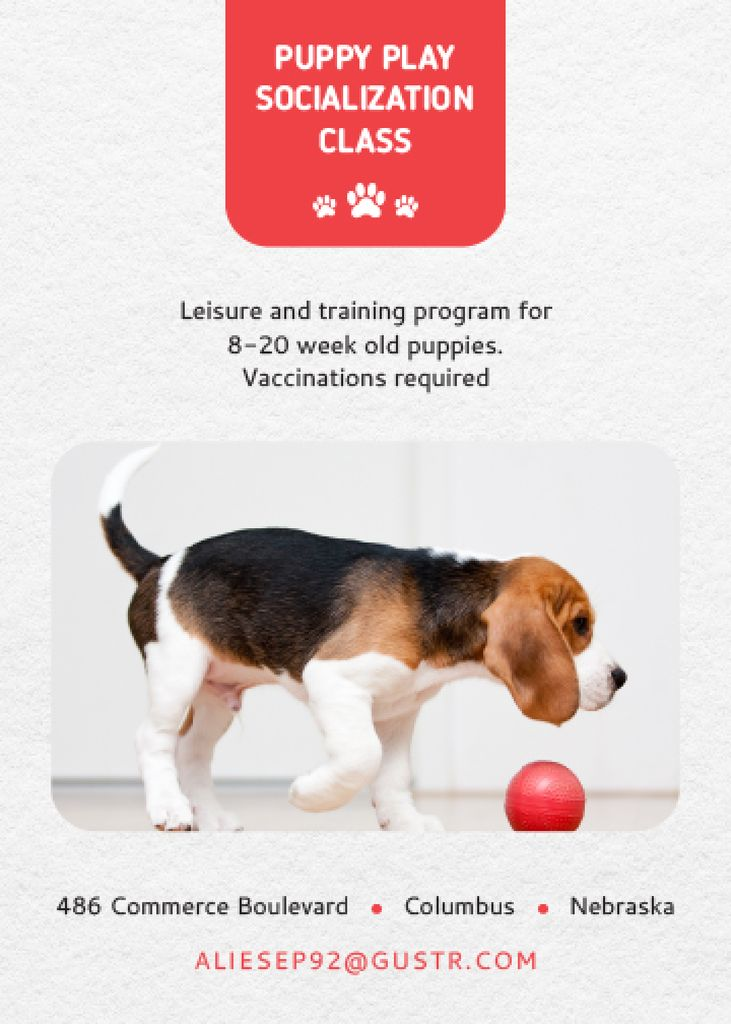 Puppy socialization class with Dog — Create a Design