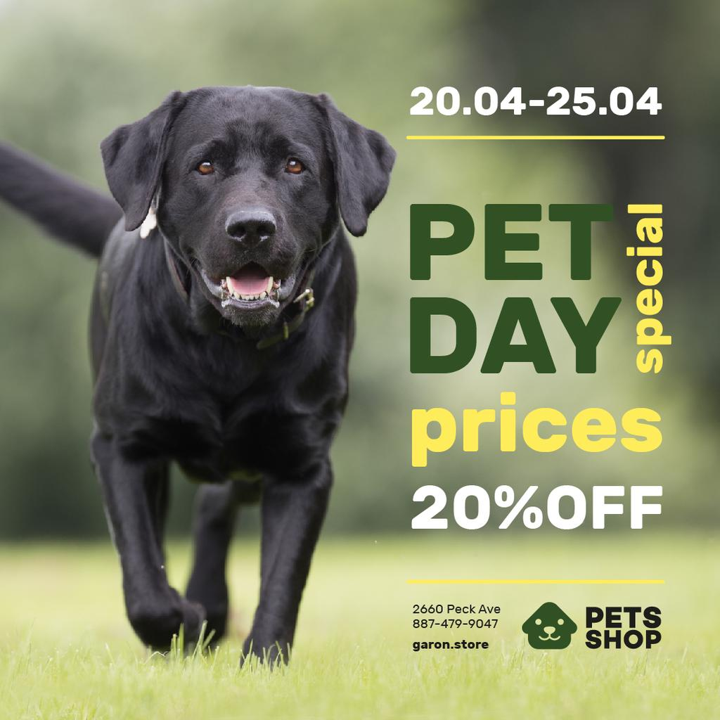 Pet Day Offer Running Black Retriever — ein Design erstellen