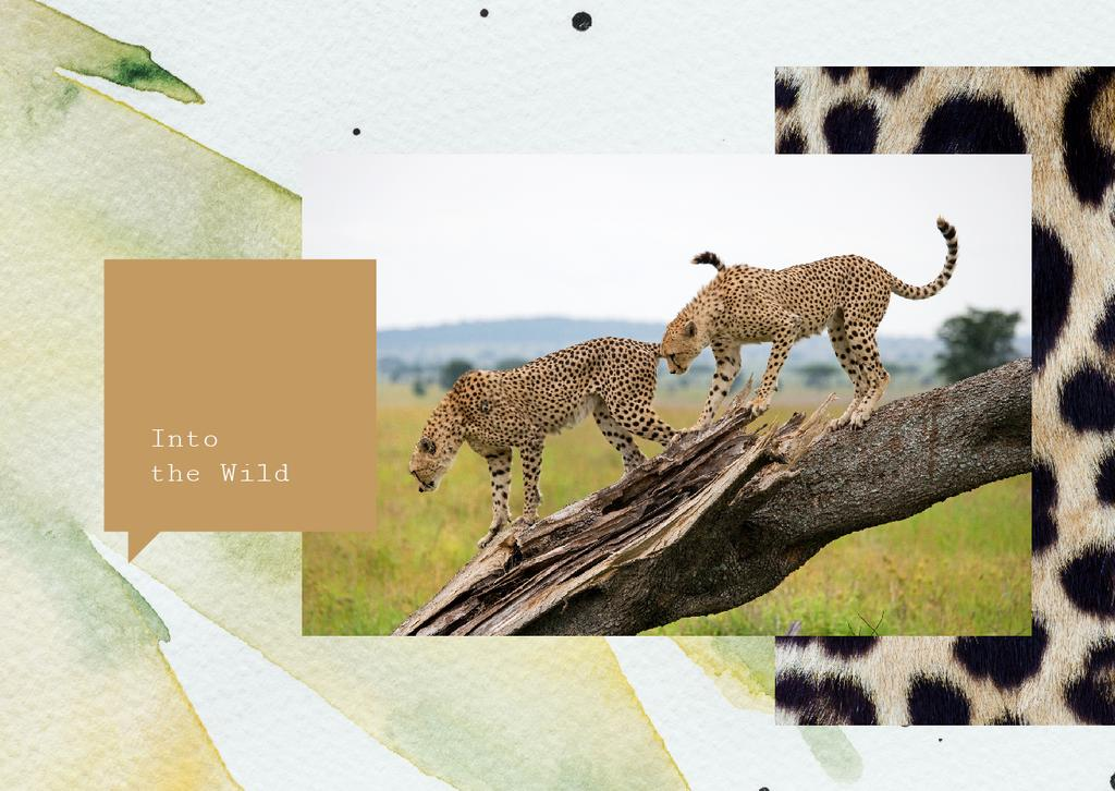 Wild cheetah in natural habitat — Create a Design