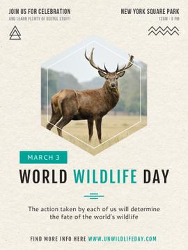 World Wildlife Day announcement with Wild Deer