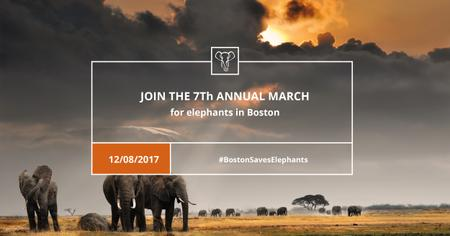 Annual march for Elephants Announcement Facebook AD – шаблон для дизайну