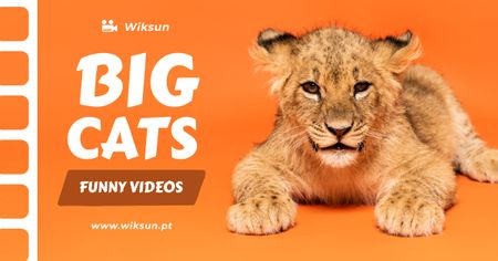 Plantilla de diseño de Wild Animals Videos Promotion Facebook AD