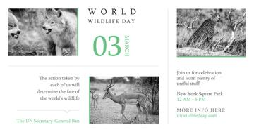World wildlife day with Wild Animals