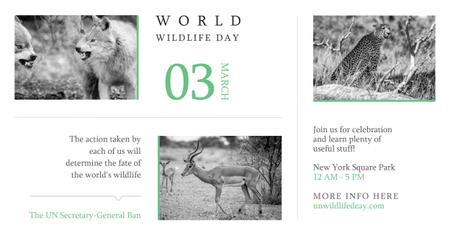 World wildlife day with Wild Animals Facebook AD Tasarım Şablonu