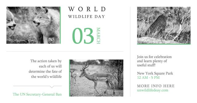World wildlife day with Wild Animals Facebook AD Design Template
