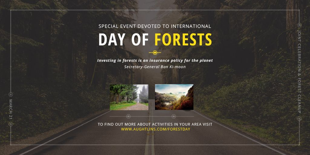 International Day of Forests Event Forest Road View   Twitter Post Template — Modelo de projeto