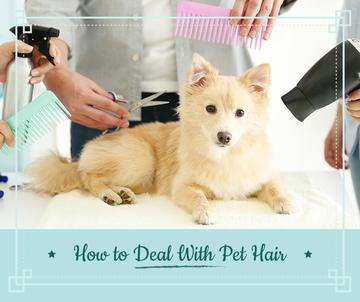Pet salon ad with Dog at grooming