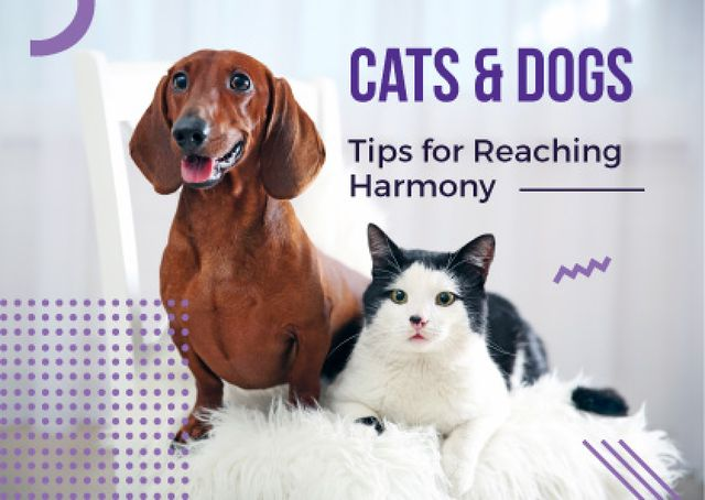 Modèle de visuel Cute Cat and Dog sitting together - Card