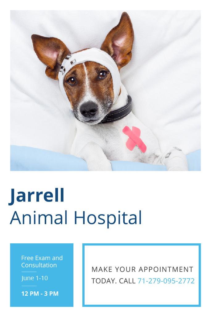 Dog in Animal Hospital — Створити дизайн