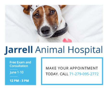 Jarrell Animal Hospital Medium Rectangle – шаблон для дизайну