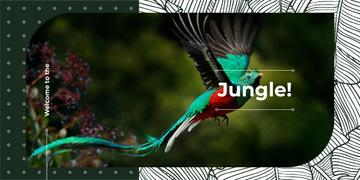 Colorful bird flying in jungle