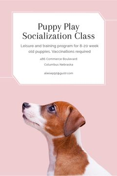 Puppy socialization class with Dog in pink