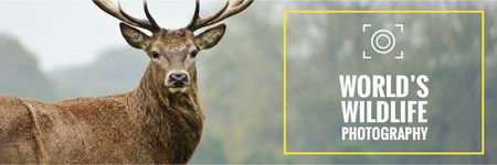World's wildlife photography Ad with Deer Email header Modelo de Design