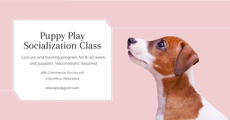 Puppy play socialization class Facebook ADデザインテンプレート