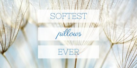 Softest Pillows Ad Tender Dandelion Seeds Image Design Template