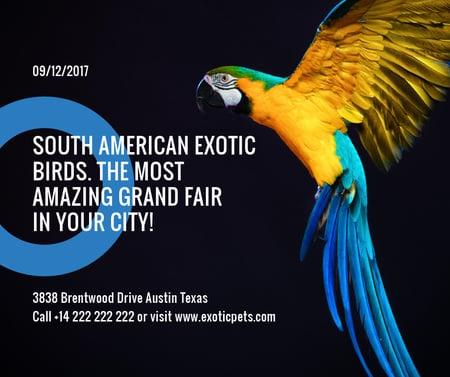 Designvorlage Exotic Birds fair Blue Macaw Parrot für Facebook