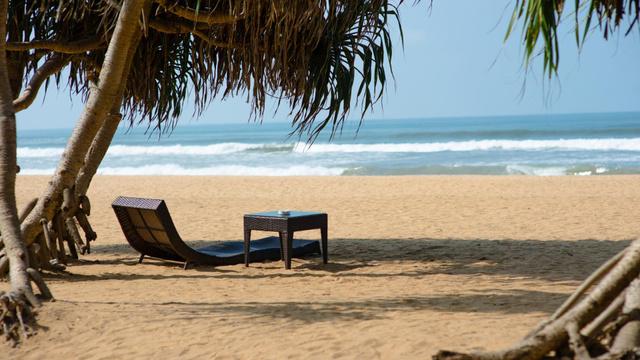 Tropical landscape of Ocean coast Zoom Background – шаблон для дизайна