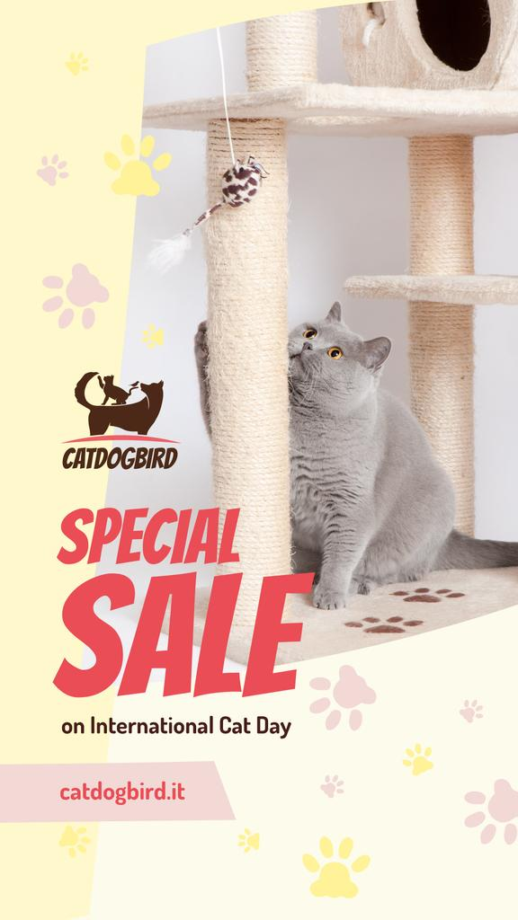 Cat Day Sale Cute Grey Shorthair Cat Playing — Create a Design