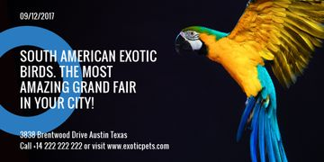 Exotic Birds Shop Ad Flying Parrot | Twitter Post Template