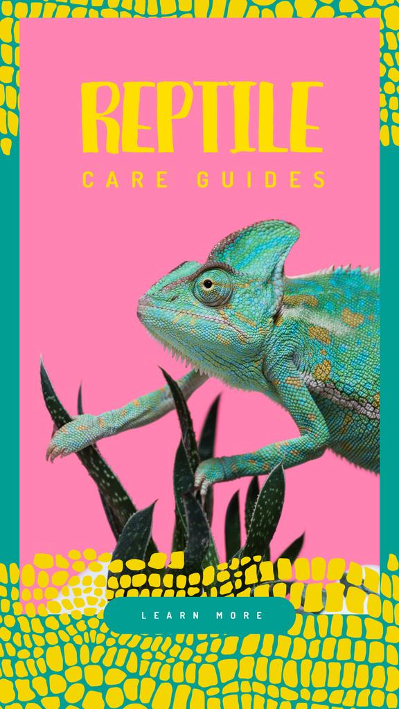 Blue chameleon reptile — Створити дизайн