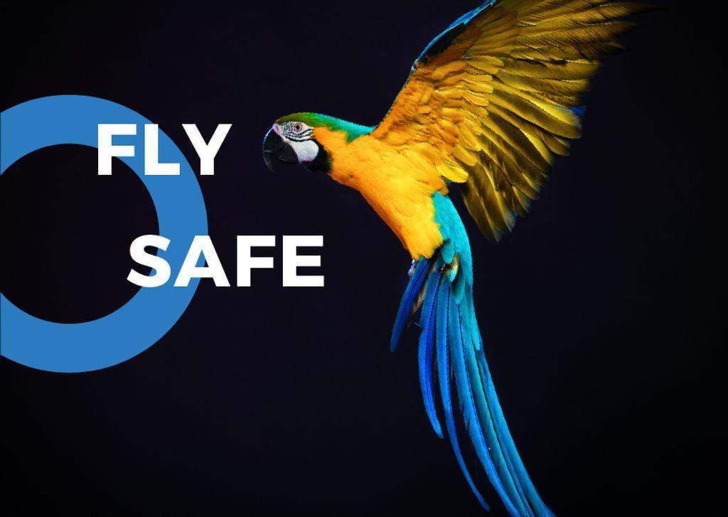 South American exotic birds fair — Створити дизайн