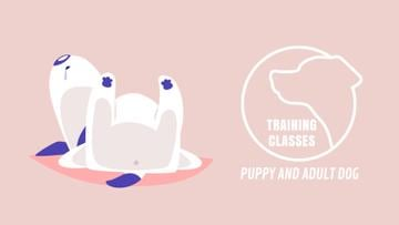 Dog Training Classes Funny Puppy Sleeping | Full Hd Video Template