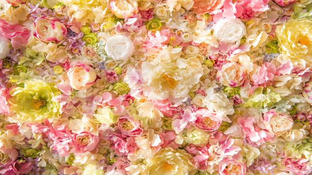 Plantilla de diseño de Beautiful tender Flowers Roses Zoom Background