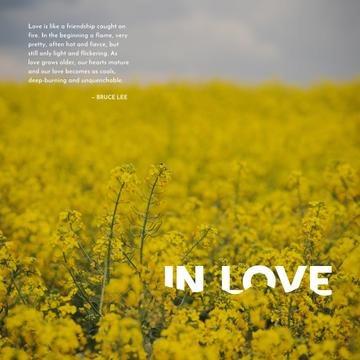 Yellow rape field with quotation