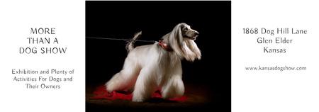 Template di design Dog Show announcement with pedigree pet Tumblr