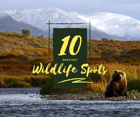 Designvorlage Wild bear in habitat für Facebook
