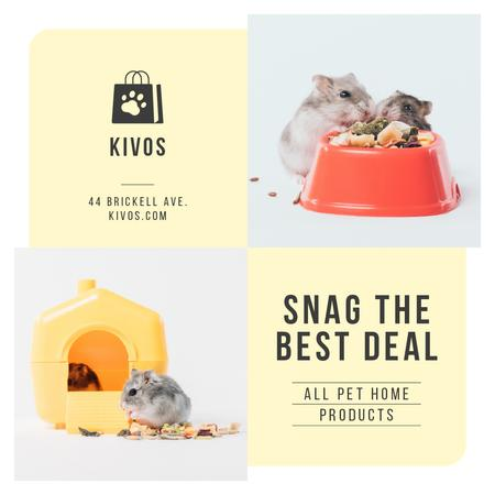 Plantilla de diseño de Pet Shop Offer Hamster in His House Instagram