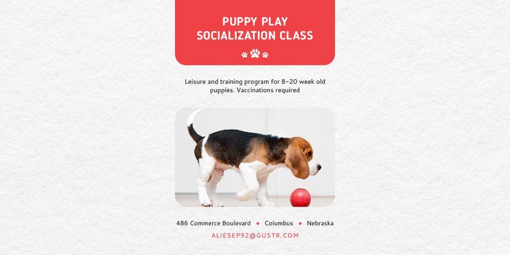 Puppy play socialization class — Crea un design
