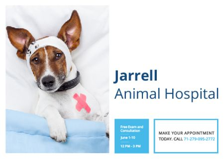 Dog in Animal Hospital Postcard Modelo de Design