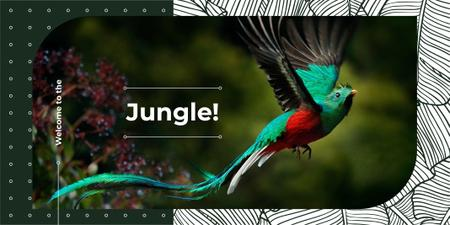 Designvorlage Colorful bird flying in jungle für Twitter
